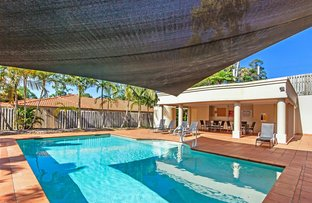 Picture of 24/1 Studio Drive, Pacific Pines QLD 4211