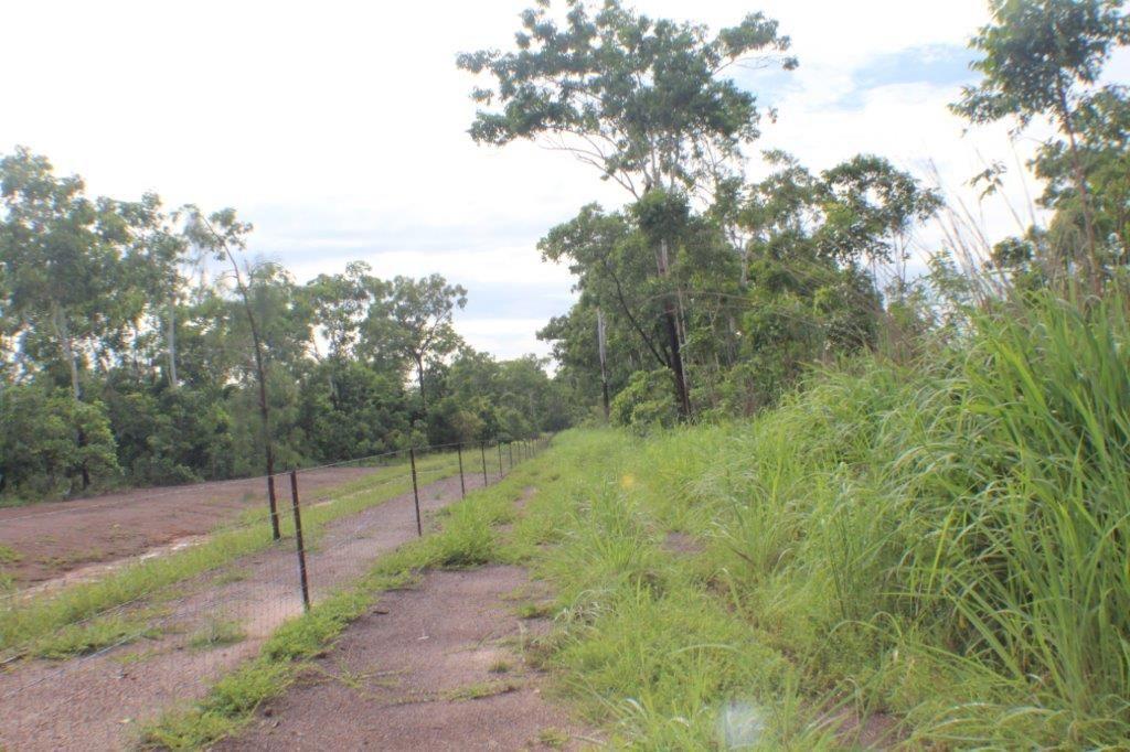 117 Eucalyptus Road, Herbert NT 0836, Image 0