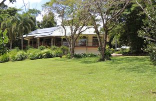Picture of 69 Lindsay Road, Carmoo QLD 4852