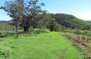 Picture of Lots 31 & 32 Armstrongs Road, West Haldon QLD 4359