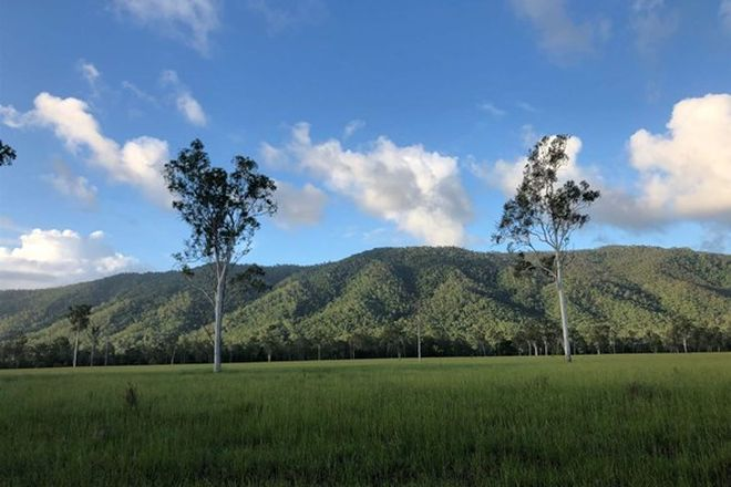 Picture of UPPER STONE QLD 4850