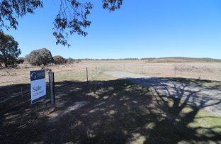 Picture of 618 Back Creek Road, Gundaroo NSW 2620