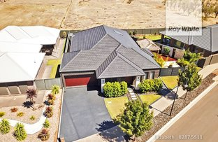 Picture of 19 The Avenue, Blakeview SA 5114