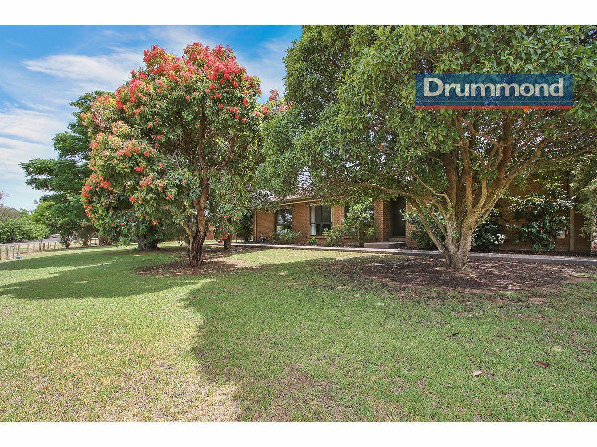 121 - 123 Clarke Street, Howlong NSW 2643, Image 0