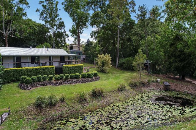 Picture of 569 Black Mountain Road, BLACK MOUNTAIN QLD 4563
