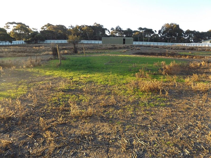 Lot 113 Campbell Street, Kingscote SA 5223, Image 0