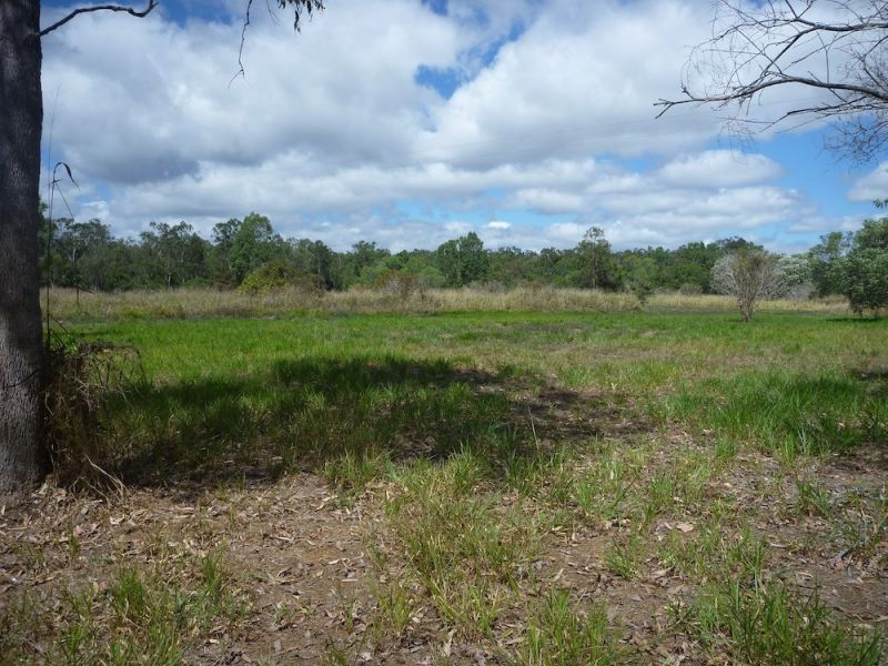 Lot 37 Wetherby Road, Mount Molloy QLD 4871, Image 1