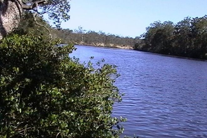 Picture of THE BRANCH NSW 2425