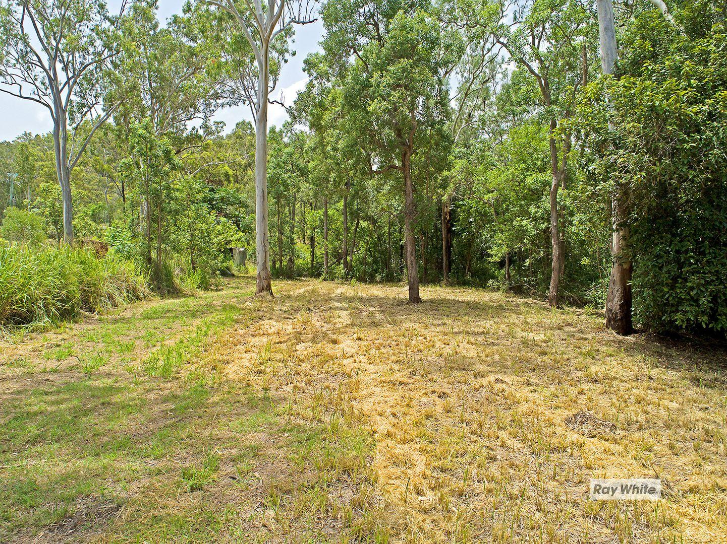 570 Coorooman Creek Road, Cawarral QLD 4702, Image 0