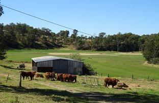 1347 Carneys Creek Rd, Carneys Creek QLD 4310
