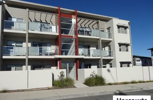 Picture of 96/311 Flemington Road, Franklin ACT 2913