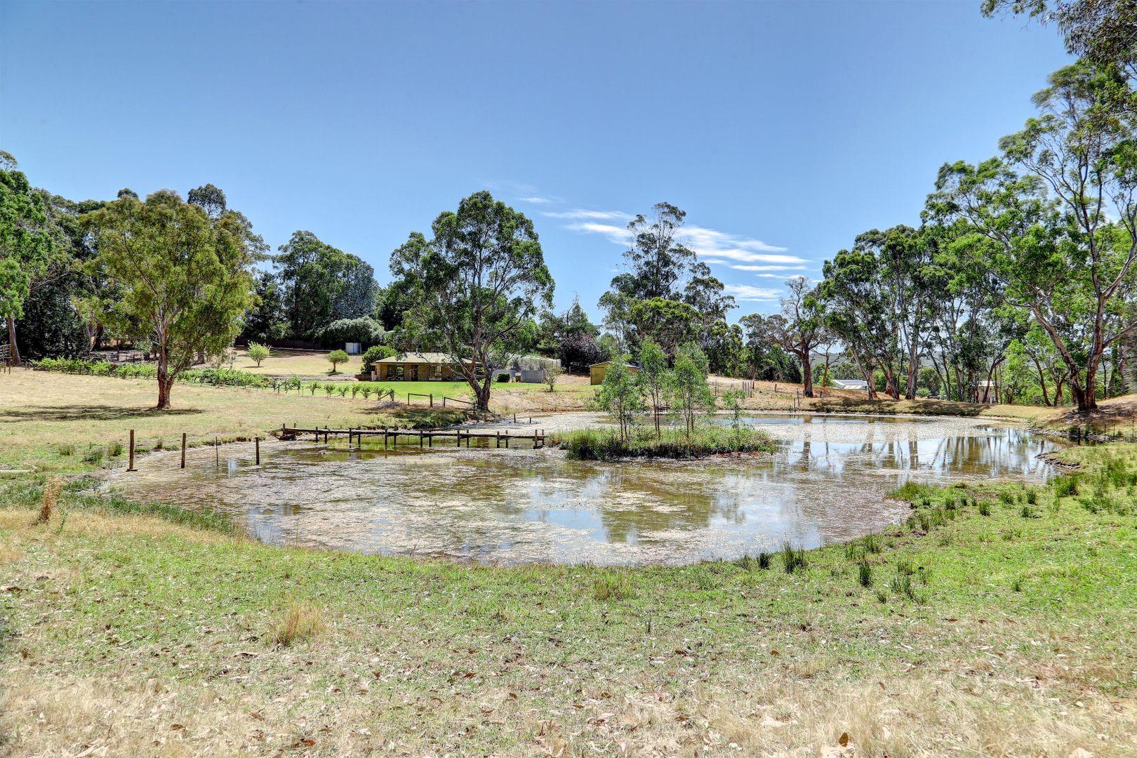 67 Kangaroo Reef Road, Mylor SA 5153, Image 0