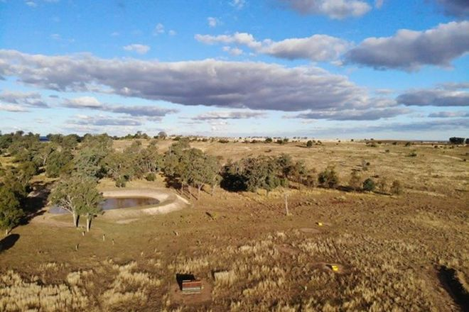 Picture of 288 ACRES GRAZING BLOCK, QUINALOW QLD 4403