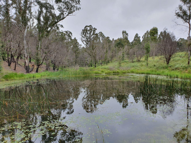 4161 Kings Highway, Monga, Braidwood NSW 2622, Image 0