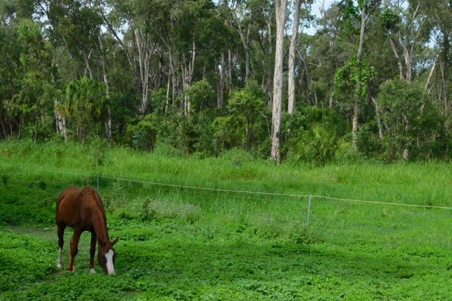 Picture of 149 CARTY ROAD, CAPE CLEVELAND QLD 4810