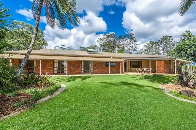Picture of 17 Byron Creek Rd, COOPERS SHOOT NSW 2479
