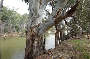 Picture of Lot 99 Old Barmah Road, Moama NSW 2731
