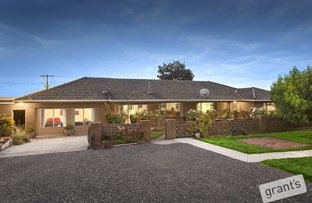 Picture of 31 Collins Road, Loch VIC 3945