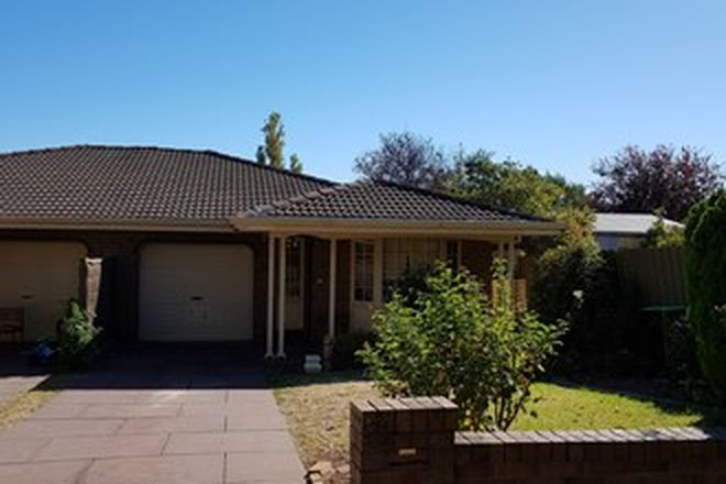 Picture of 31 Jellicoe Street, LINDEN PARK SA 5065