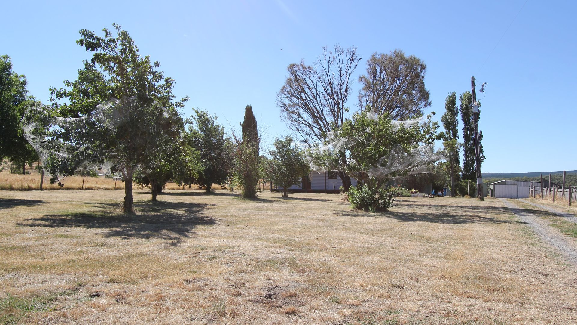 571 Linton-Piggoreet Road, Happy Valley VIC 3360, Image 19