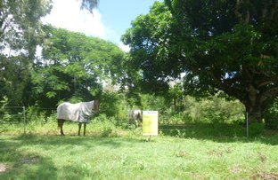 Picture of 31 Racecourse Road, Cooktown QLD 4895