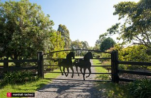 Picture of 146 Coolagolite Road, Coolagolite NSW 2550