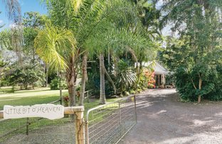 Picture of 10 Wattlebird Drive, Doonan QLD 4562