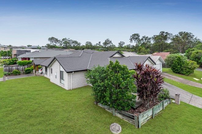Picture of 37 Holly Crescent, GRIFFIN QLD 4503