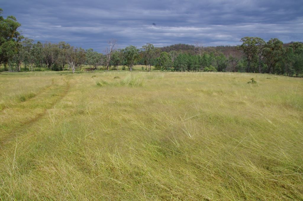 1033 Haywood Road, Delungra NSW 2403, Image 2