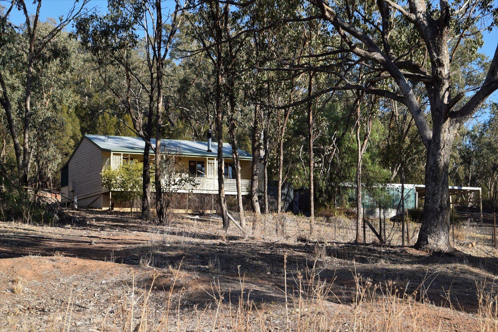 'Fox Hill' 573 Blathery Creek Road, Neurea NSW 2820, Image 0