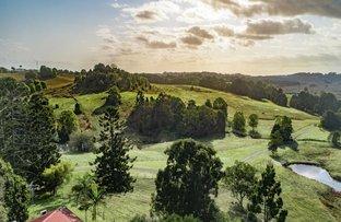 Picture of 174 Dingo Lane, Myocum NSW 2481