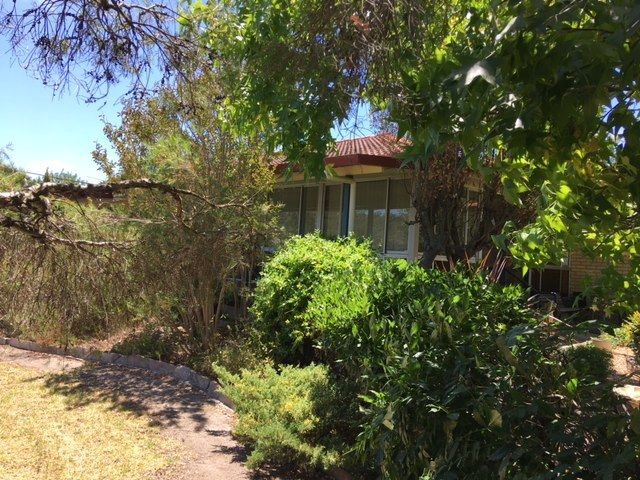 37 Pike St, Stanthorpe QLD 4380, Image 2