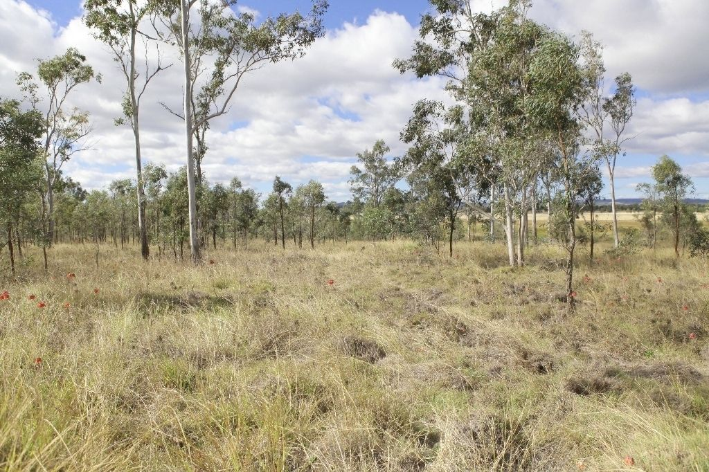 Lot 36 Forbe Road, Forest Hill QLD 4342, Image 2