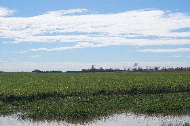 Picture of 286 BARRETT ROAD, BRANDON QLD 4808