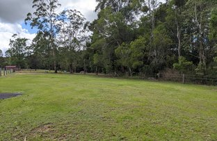 Picture of Lot 11, 100 Harold Place, Peachester QLD 4519