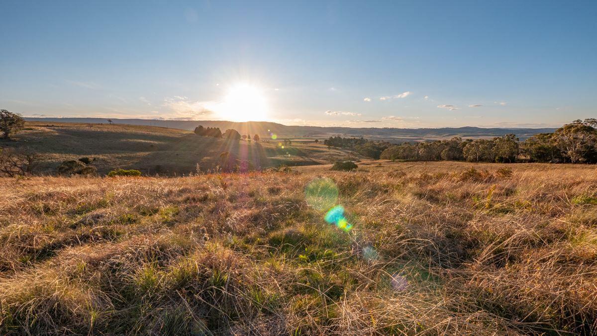 11279 Oxley Highway, Yarrowitch NSW 2354, Image 1