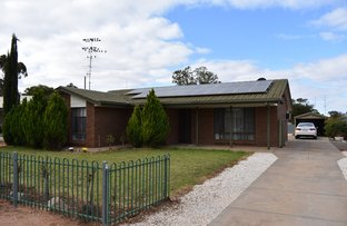 Picture of 17 Burns Street, Waikerie SA 5330