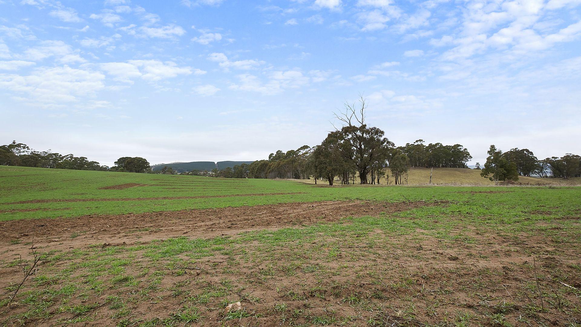 Meadow Flat NSW 2795, Image 2