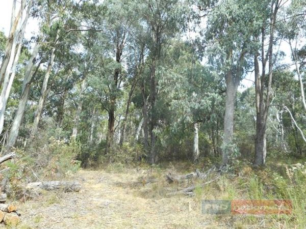 Lot 3 Alta Villa Road, Batlow NSW 2730, Image 1