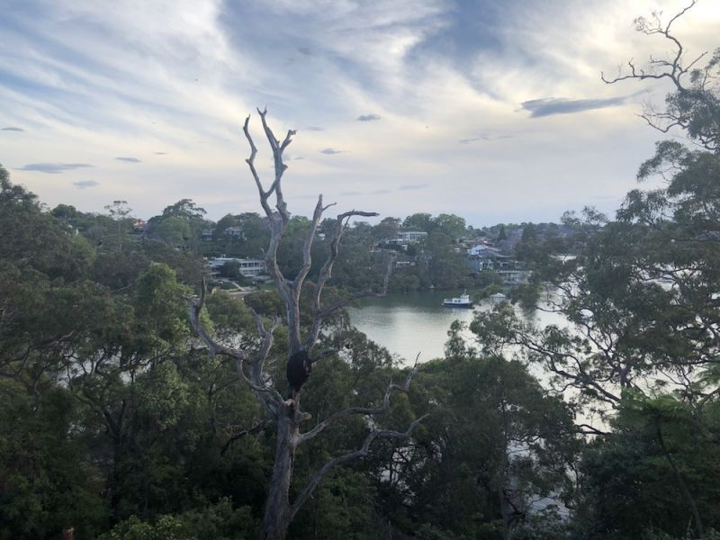 Riverview NSW 2066, Image 1