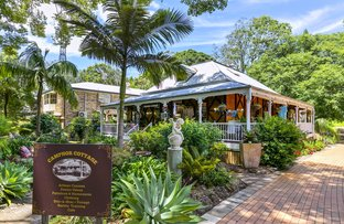 Picture of 190 Main Street, Montville QLD 4560