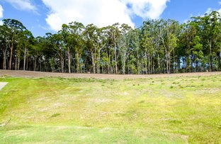 Lot 422 Wattlebird Close, Bli Bli QLD 4560