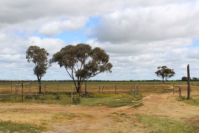 Picture of Lot 130 Walker Street, TRAYNING WA 6488