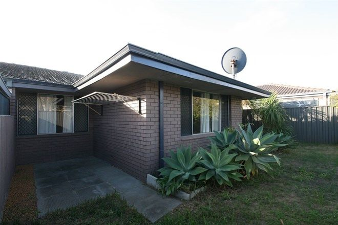 Picture of 91A Parkin Street, ROCKINGHAM WA 6168