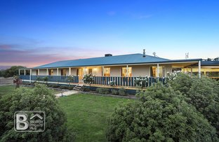 Picture of 135 Wild Cherry Road, Lockwood South VIC 3551
