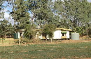Picture of 623 Barnes Road, Finley NSW 2713