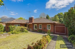 Picture of 14 Orchard Street, Pymble NSW 2073