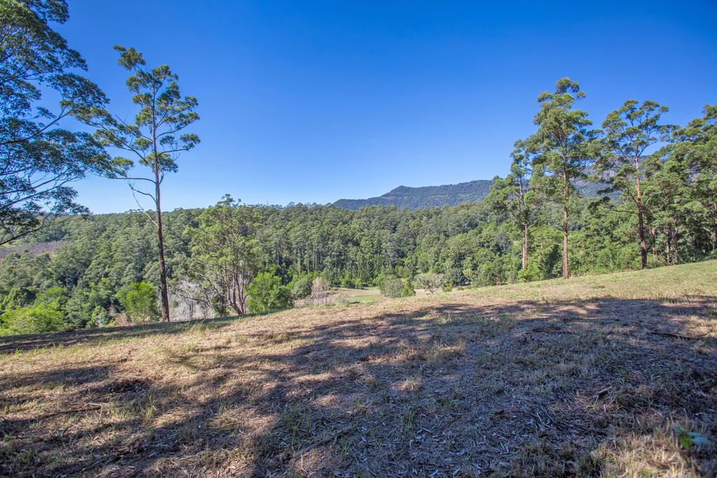 83 Mt Burrell Road, Mount Burrell NSW 2484, Image 1