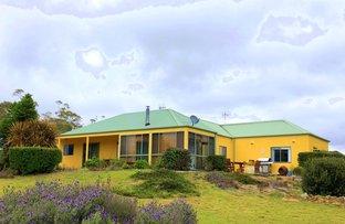 530 Budawang Road, Mongarlowe NSW 2622