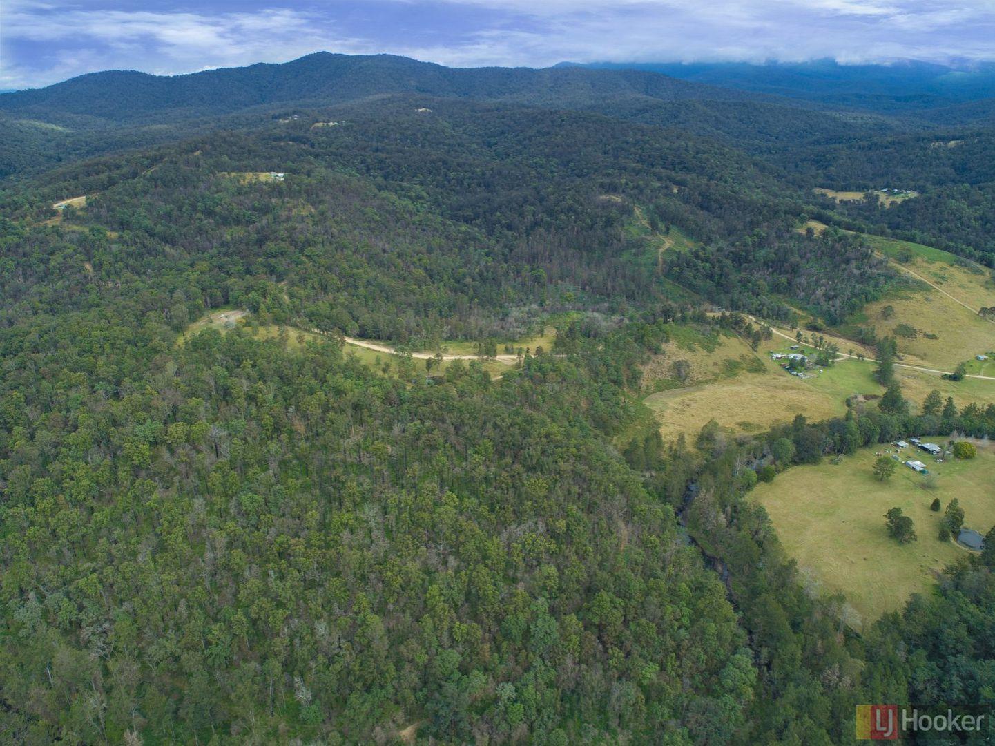 1100 Dungay Creek Road, Wittitrin NSW 2440, Image 1